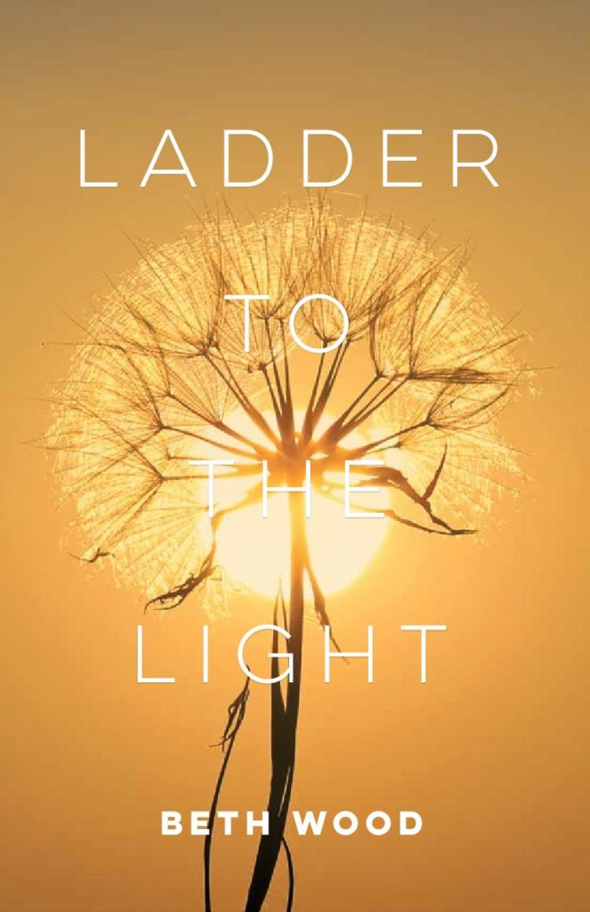 Ladder cover