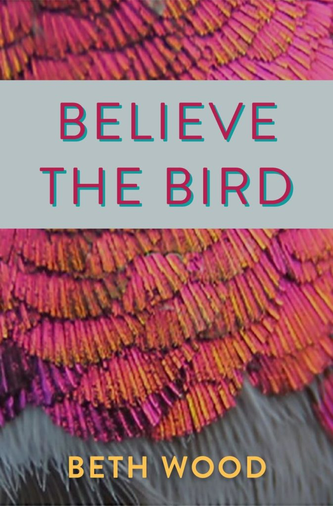 Believe the BIrd cover
